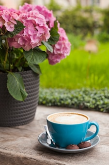 Błękitna filiżanka latte kawa z ciastkami na drewnianej powierzchni blisko różowego kwiatu garnka