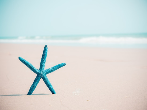 Błękitna rozgwiazda na piaska i morza tle z kopii przestrzenią.