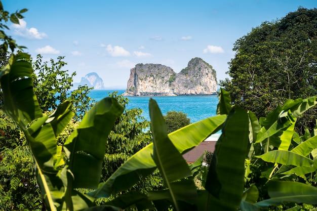 Błękitna sceneria egzotyczna plaża w tajlandia andaman morzu. przygoda w dżungli. malowniczy krajobraz na rajskich wyspach.