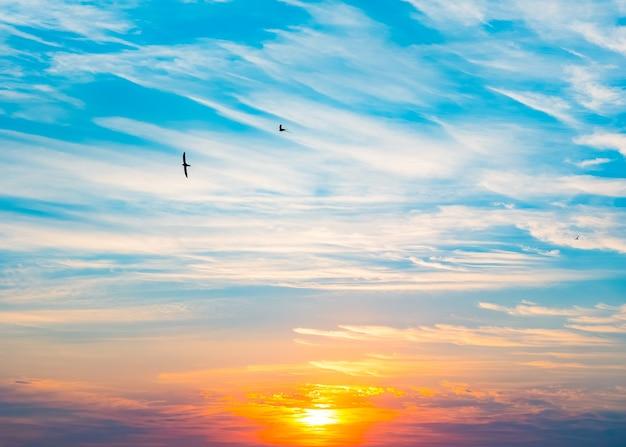 Błękitne niebo i białe chmury o wschodzie słońca
