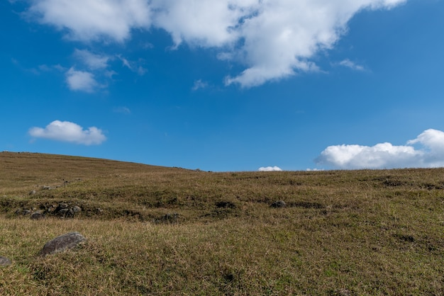 Błękitne niebo i białe chmury, uschnięta i żółta łąka