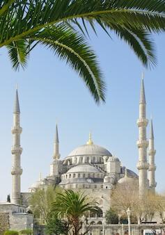 Błękitny meczet w stambule, turcja