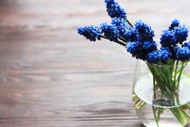 Błękitny muscari - hiacynt w wazie z wodą na drewnianym tle
