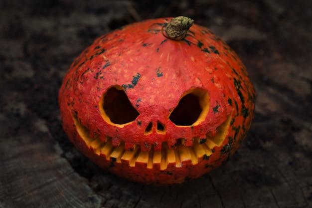 Bliska czerwona straszna i wściekła dynia z dużymi oczami i zębami, patrząc i uśmiechając się do kamery.