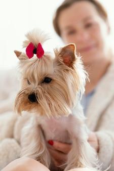 Bliska kobieta trzyma ładny pies