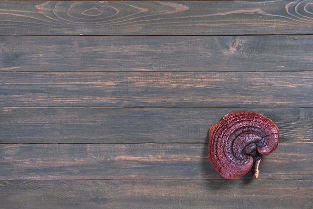 Bliska ling zhi grzyb, grzyb ganoderma lucidum na stół z drewna
