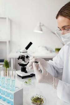 Bliska naukowiec trzymając szkiełko do slajdów