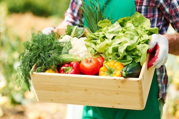 Bliska pudełko z warzywami w rękach dojrzałego mężczyzny