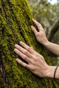 Bliska ręce dotykając mchu drzewnego