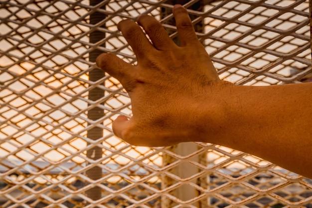 Bliska ręka człowieka trzymającego klatkę.