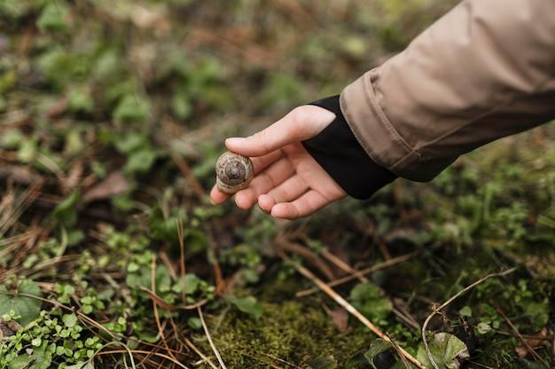 Bliska ręka trzyma muszlę ślimaka