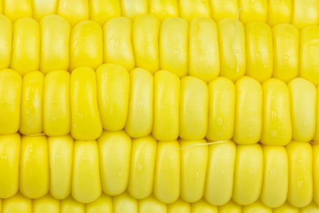 Bliska tekstury i tła nasion świeżych słodkich kukurydzy.