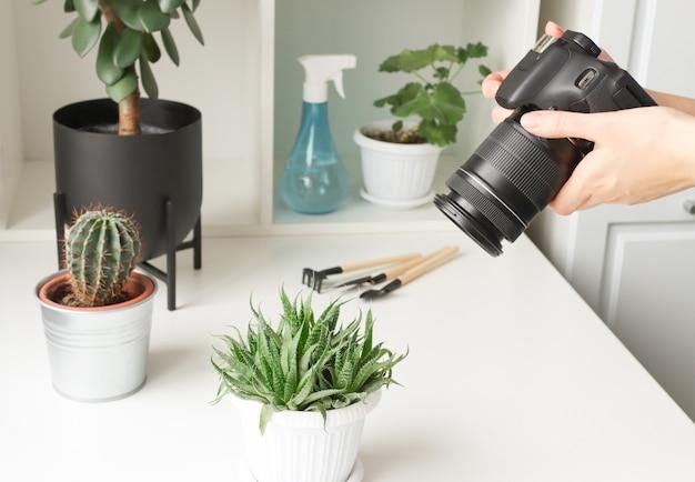 Bloger roślinny robi im zdjęcia na swoim blogu