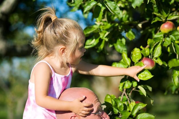 Blondynka zbierając jabłko z drzewa