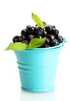 Blueberry w wiadrze z miętą na białym tle