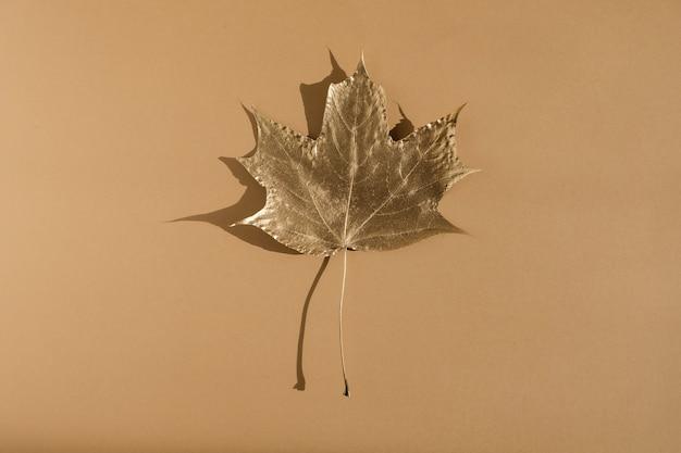 Błyszczący złoty liść na tle koloru nude. widok płaski, widok z góry. minimalna koncepcja kompozycji jesień.
