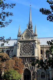 Boczne wejście i charakterystyczne okna róży słynnej katedry notre dame w paryżu