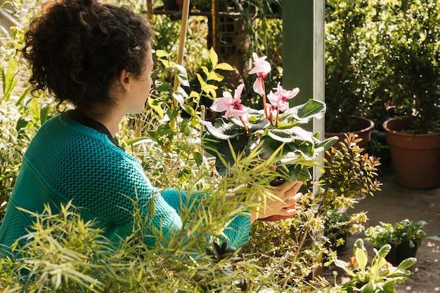 Boczny widok kobiety mienia kwiat w garnku
