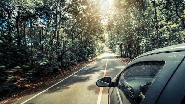 Boczny widok samochodowy jeżdżenie na drodze w lasowej autostradzie