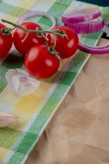 Boczny widok warzywa jako pomidorowa cebula z czosnek skórą na szkockiej kraty płótna powierzchni z kopii przestrzenią
