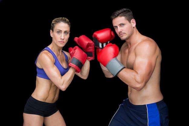 Bodybuilding para pozuje z bokserskimi rękawiczkami patrzeje kamerę