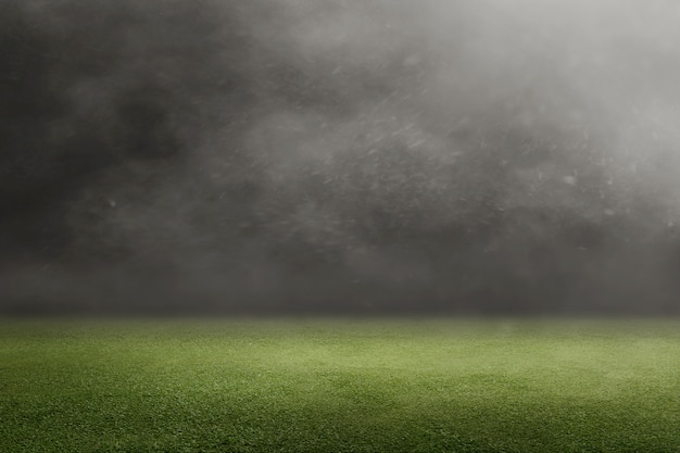 Boisko do piłki nożnej z zieloną trawą