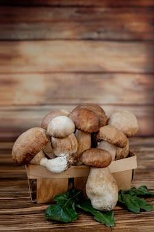 Borowik grzybowy nad drewnem