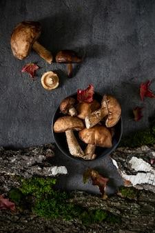 Borowiki i mech. jedzenie zdrowe i delikatne