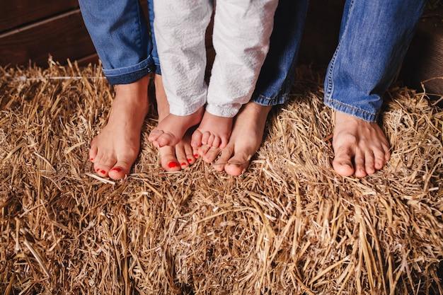 Bose stopy członków rodziny - matki, ojca i dziecka na sianie
