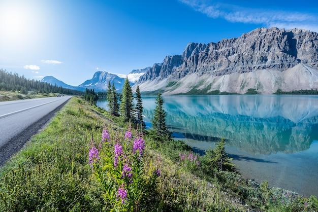 Bow lake, park narodowy banff, alberta, kanada