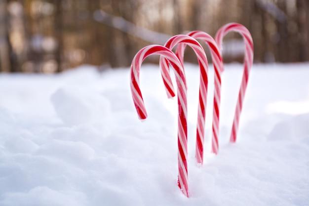 Boże narodzenie miętowe cukierki z miejsca na tekst w tle śniegu