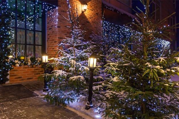 Bożonarodzeniowe podwórko z naturalnymi choinkami ozdobionymi niebieskimi girlandami i lampami ulicznymi w pobliżu