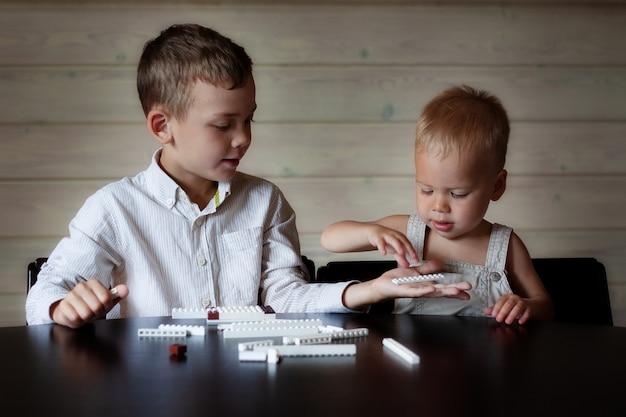 Bracia bawią się dobrze grając w grę konstruktora