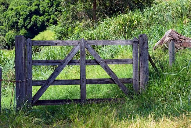 Brama rolnicza z pastwiskiem i drzewami z tyłu, typowa dla wsi brazylii