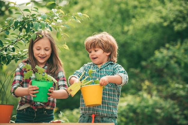 Brat i siostra hodują razem kwiaty latem uprawiając zabawne dzieci rolnik na farmie z...