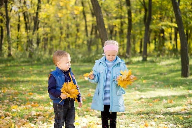 Brat i siostra z jesiennymi liśćmi w dłoniach spacerujący po jesiennym lesie
