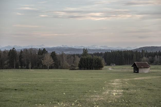 Brązowa drewniana chatka pośrodku pola trawiastego otoczonego drzewami pod różowawym niebem