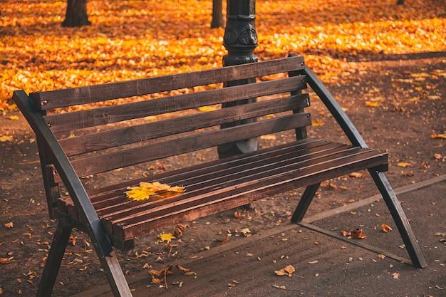 Brązowa drewniana ławka w miejskim parku z opadłymi jesiennymi liśćmi.