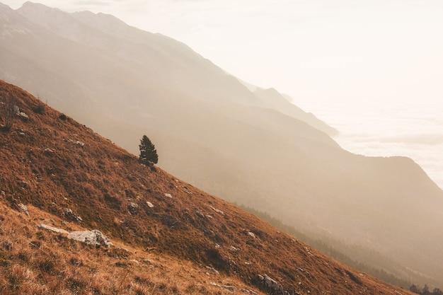 Brązowa góra
