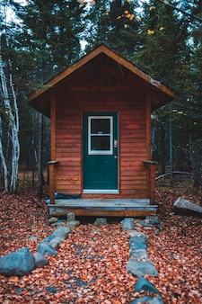 Brązowa kabina w lesie