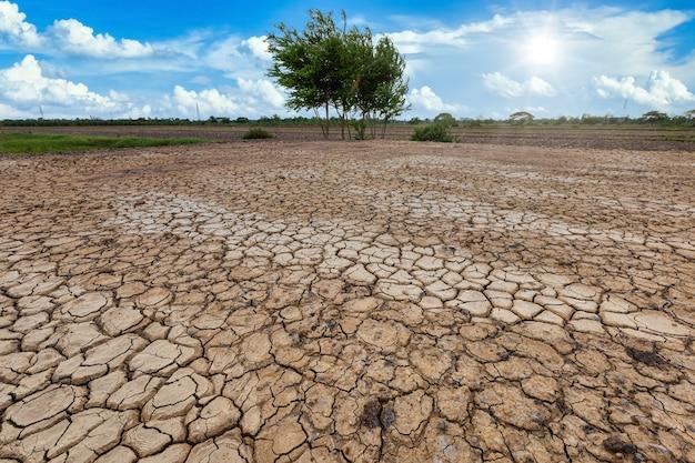 Brązowa, sucha ziemia lub popękana ziemia