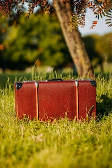 Brązowa walizka vintage w lesie jesienią