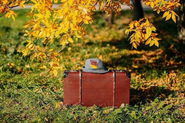 Brązowa walizka vintage z filcowym kapeluszem w lesie jesienią