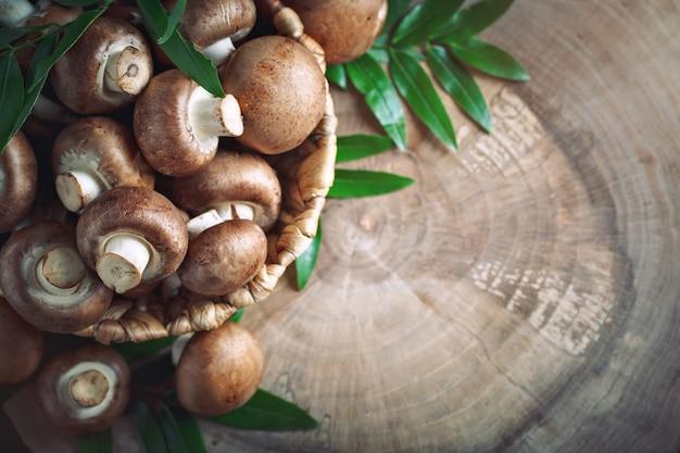 Brązowe grzyby w koszu na pniu drzewa.