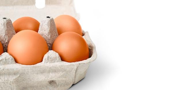 Brązowe jajka w tekturowym pudełku. pojedynczo na białym tle z cieniem. układ, układ, miejsce na logo i tekst.