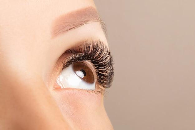 Brązowe oko z pięknym długimi rzęsami z bliska. przedłużanie rzęs w kolorze brązowym
