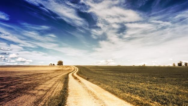 Brązowe pole pod błękitne niebo i białe chmury w ciągu dnia