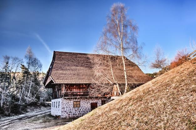 Brązowy dom na dachu w pobliżu fotografii zwiędłych drzew