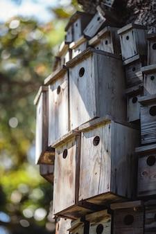 Brązowy drewniany domek dla ptaków w soczewce z funkcją tilt shift