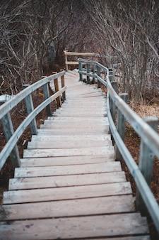 Brązowy drewniany most schody